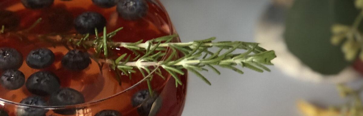 Sparkling Pomegranate Spritzer Cocktail